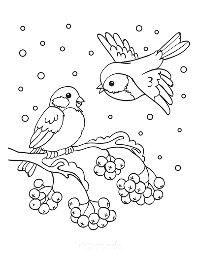 Winter Coloring Pages Birds Snow Branch Berries