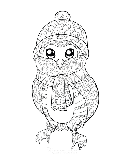 Winter Coloring Pages for Adults Cute Owl