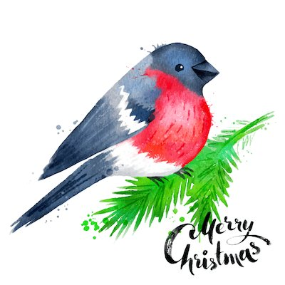 Printable Christmas Cards - Watercolor Robin Merry
