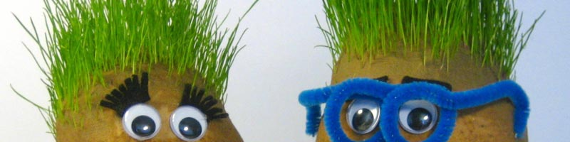 Cutest Grass Heads - Step by Step Instructions to Make