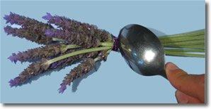 lavender bottles step 3
