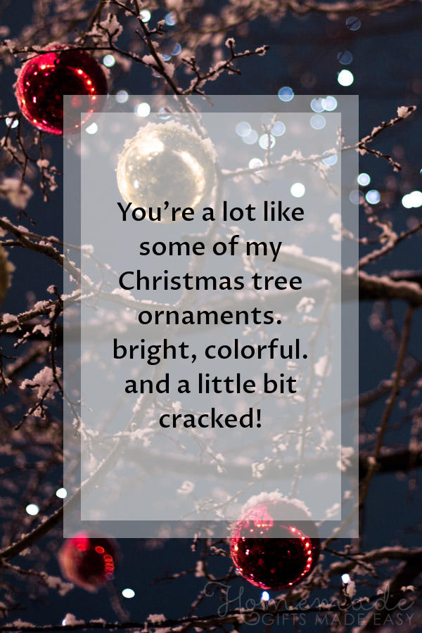 merry christmas images funny ornaments cracked 600x900