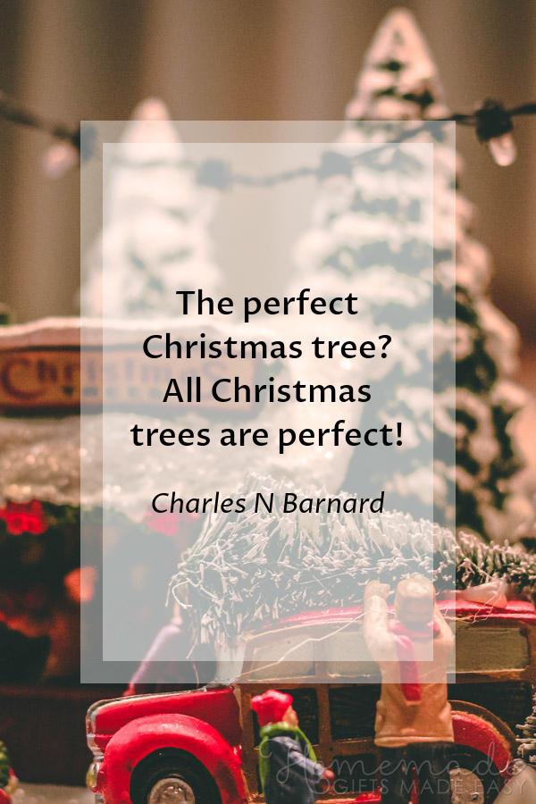 merry christmas images funny perfect tree barnard 600x900